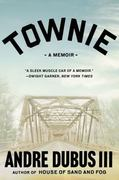 Townie 1st Edition 9780393340679 0393340678
