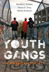 Youth Gangs in American Society 4th edition 9781133049562 1133049567