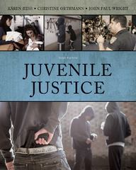 Juvenile Justice 6th edition 9781285401454 128540145X