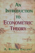 An Introduction to Econometric Theory 0 9780691016450 0691016453