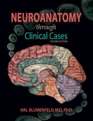 Neuroanatomy Through Clinical Cases 2nd Edition 9780878936137 0878936130