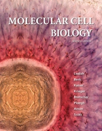 Molecular Cell Biology 7th Edition 9781429234139 142923413X