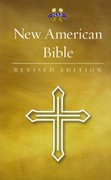 New American Bible 1st Edition 9781585169917 1585169919