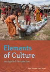 Elements of Culture 1st edition 9781111830007 1111830002