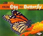 From Egg to Butterfly 0 9780761385738 0761385738