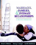 Marriages, Families, and Intimate Relationships: A Practical Introduction 1st Edition 9780205366743 0205366740