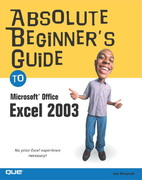 Absolute Beginner's Guide to Microsoft Office Excel 2003 1st edition 9780789729415 0789729415
