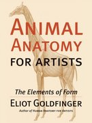 Animal Anatomy for Artists 1st Edition 9780195142143 0195142144