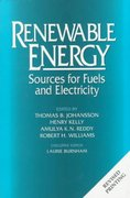 Renewable Energy 2nd edition 9781559631389 1559631384