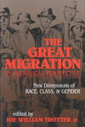 The Great Migration in Historical Perspective 1st Edition 9780253206695 0253206693