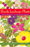 Florida Landscape Plants 2nd edition 9780813028385 0813028388