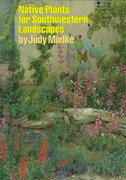 Native Plants for Southwestern Landscapes 1st edition 9780292751477 0292751478