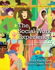 The Social Work Experience 6th edition 9780205819966 0205819966