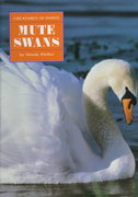 Mute Swans 0 9780382393259 0382393252