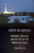 Under the Surface 1st Edition 9780801450167 0801450160