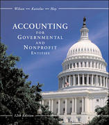 Accounting for Governmental and Nonprofit Entities with City of Smithville Package 12th edition 9780072443813 0072443812