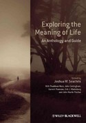 Exploring the Meaning of Life 1st Edition 9780470658796 0470658797