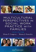 Multicultural Perspectives in Social Work Practice with Families 3rd Edition 9780826108296 0826108296