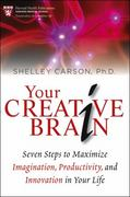 Your Creative Brain 1st Edition 9781118396544 1118396545
