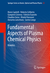 Fundamental Aspects of Plasma Chemical Physics 1st Edition 9781441981851 1441981853