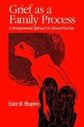 Grief As A Family Process 1st Edition 9780898621969 0898621968