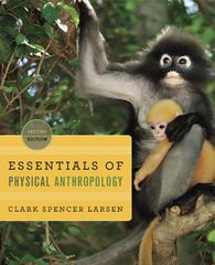 Essentials of Physical Anthropology 2nd Edition 9780393919387 0393919382