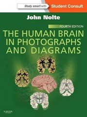 The Human Brain in Photographs and Diagrams 4th Edition 9781455709595 145570959X