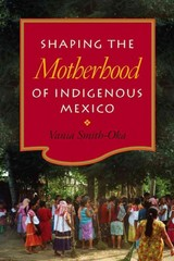 Shaping the Motherhood of Indigenous Mexico 1st Edition 9780826519191 0826519199