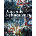 Juvenile Delinquency 9th Edition 9780132987318 0132987317