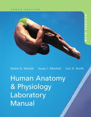 Human Anatomy & Physiology Laboratory Manual, Main Version 10th Edition 9780321827517 0321827511