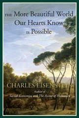 The More Beautiful World Our Hearts Know Is Possible 1st Edition 9781583947241 1583947248