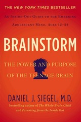 Brainstorm 1st Edition 9781585429356 158542935X