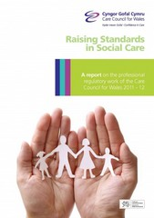 Raising standards in social care 0 9781906528935 1906528934