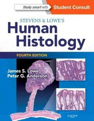 Stevens & Lowe's Human Histology 4th Edition 9780723435020 0723435022