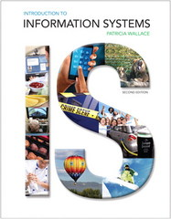 Introduction to Information Systems 2nd Edition 9780133571752 0133571750
