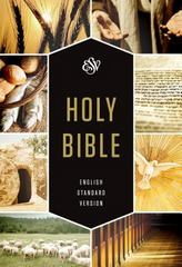 ESV Holy Bible, Textbook Edition 1st Edition 9781433545191 1433545195