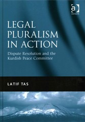 Legal Pluralism in Action 1st Edition 9781317106159 1317106156