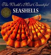The World's Most Beautiful Seashells 0 9781884942006 1884942008
