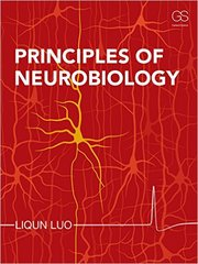 Principles of Neurobiology 1st Edition 9780815344926 0815344929