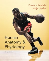 Human Anatomy & Physiology 10th Edition 9780321927040 0321927044