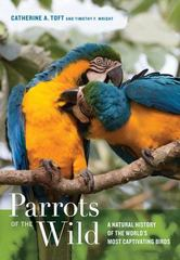 Parrots of the Wild 1st Edition 9780520962644 0520962648