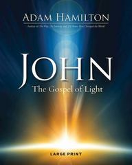 John - The Gospel of Light and Life 1st Edition 9781501805356 1501805355