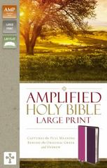 Amplified Holy Bible, Large Print 1st Edition 9780310444060 0310444063