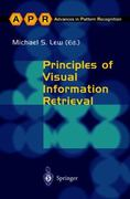 Principles of Visual Information Retrieval 1st edition 9781852333812 1852333812