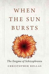 When the Sun Bursts 1st Edition 9780300216233 0300216238