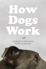 How Dogs Work 1st Edition 9780226128139 022612813X