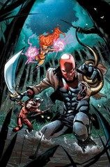 Red Hood and the Outlaws Vol. 7 (The New 52) 1st Edition 9781401258566 1401258565