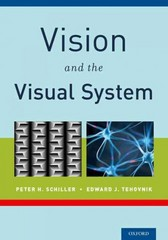 Vision and the Visual System 1st Edition 9780199936533 0199936536