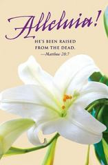 He's Been Raised Easter Lilies Bulletin 2016 1st Edition 9781501802546 1501802542