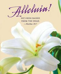 He's Been Raised Easter Lilies Bulletin 2016 1st Edition 9781501802553 1501802550